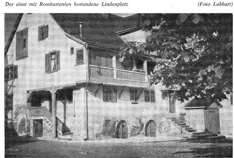 Lindenplatz1